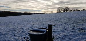 ice trough